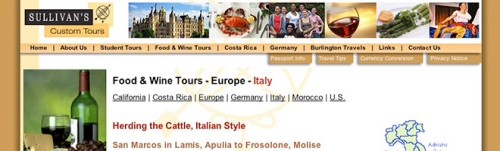 Website Updating Example - Sullivan's Custom Tours