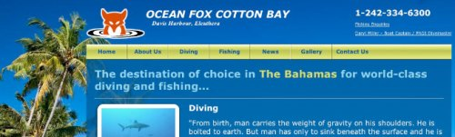 Fishing and Diving Website Design